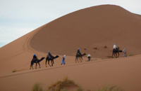 camel rides and trekking in Marrakech