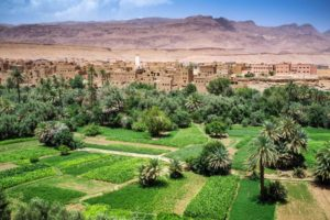 Morocco Dades Valley Oasis And Buildings 300x200